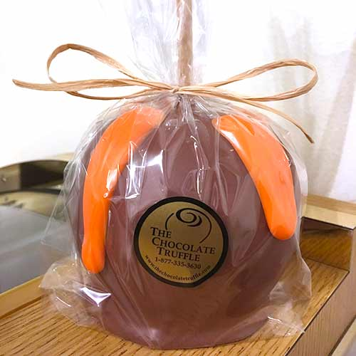 Hand Dipped Caramel Chocolate Apple
